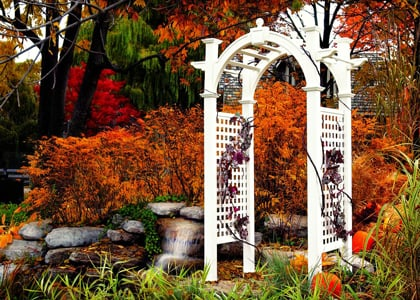 beautiful arbor in landscape
