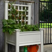 kingsrow-raised-planter-trellis